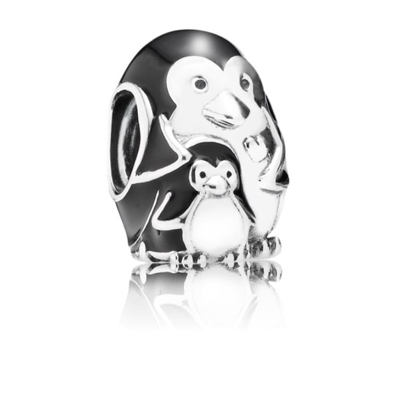 Pandora Jewelry - DISCONTINUED Pandora Charm